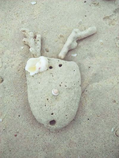 The stone on the beach! Enjoying Life I put it into the appearance of the milu deer!