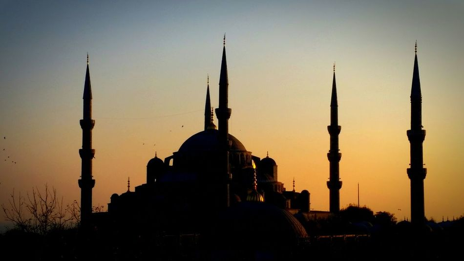 Blue Mosque Mosque Turkey Blue Mosque, Istanbul Sunset Silhouettes Silhouette_collection Eyeem Best Shots - Silhouette Silhoutte Photography Silhouette Architecture_collection Amazing Architecture Architecturelovers EyeEm Best Shots - Architecture Old Architecture Awesome Architecture Sacral Place Hystorical Centre