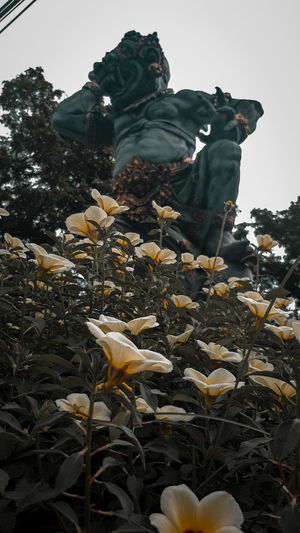 Low angle view of statue amidst flowering plants against sky