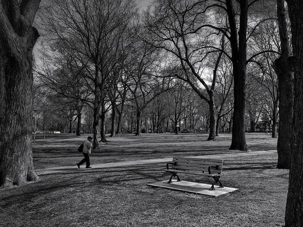 They walk among us in the distance... EyeEm Best Shots Bw_collection EyeEm Nature Lover Nature_collection Blackandwhite Black And White From My Point Of View Streetphoto_bw Is This Seat Taken? Eye4photography