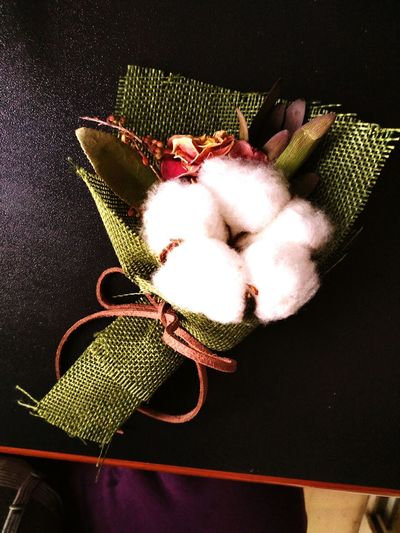 cotton Flower First Eyeem Photo