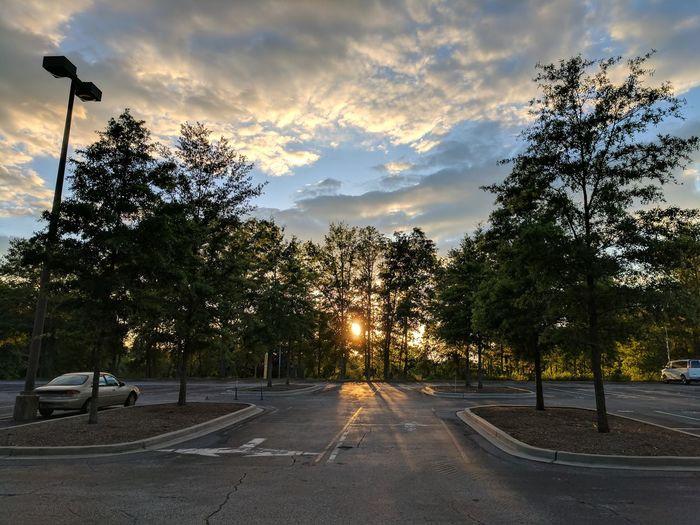 Cloud - Sky Sun Sky Outdoors Sunset Landscape Tree Nature Nature Teampixel Clemson Clemson University Mobilephotography EyeEmNewHere Eyeemnew Google Pixel XL