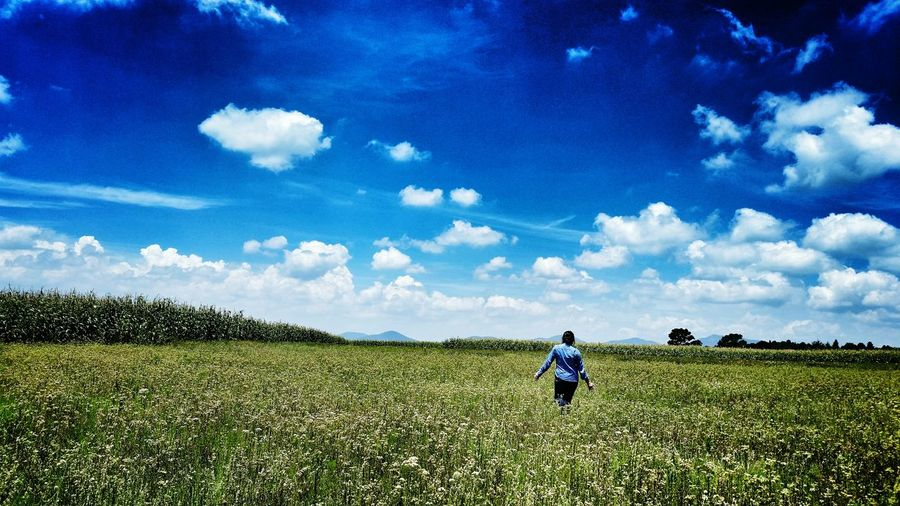 Rear view of man standing on field against blue sky