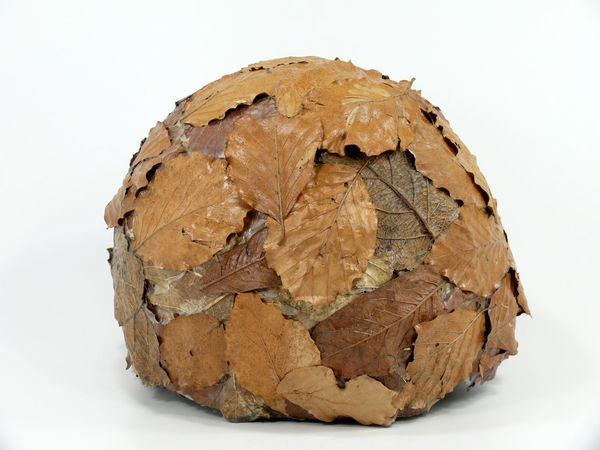 Bread Brown Bun Close-up Decoration Flower Shell Foliage Foliage Plant Food Freshness Healthy Eating Leaves Manual Work Natural Material Nature No People Plant Dish Pouches Studio Shot Vascular Vascular Tissue Vascularity  White Background