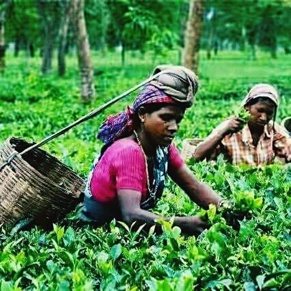 Working Women First Eyeem Photo