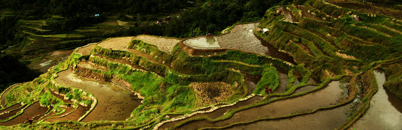 Luzon Tourist Attraction  World Heritage Ancient Civilization Beauty In Nature Day High Angle View Landscape Mountain Nature No People Outdoors Rice Field Scenics Terraced Field Tranquil Scene Travel Destinations Water