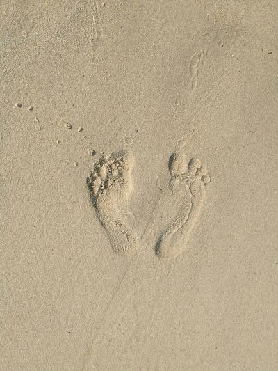 Directly Above Shot Of Footprints On Sandy Beach