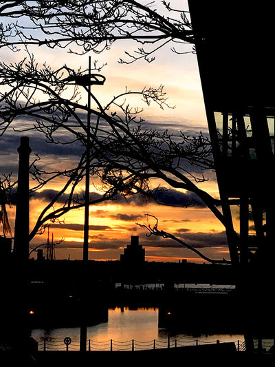 Beauty In Nature Cloud - Sky Connection Dramatic Sky Harbor Nature Nautical Vessel Outdoors Reflection Silhouette Sky Sunset Travel Destinations Tree Water