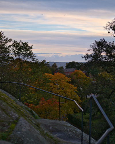 View from Kaivopuisto hill Sea Sunset Nature Sky Landscape Tree Autumn Autumn Leaves Fence Woods Outdoors Forest Rock Railing Hill Calming Environment Beauty In Nature No People Boundary Leading Line Horizon Over Water Cloud - Sky Gh5