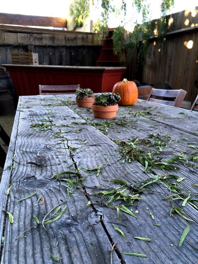 We're ready to share the Fall with you on this table! Fall Table Smell Of Seasons