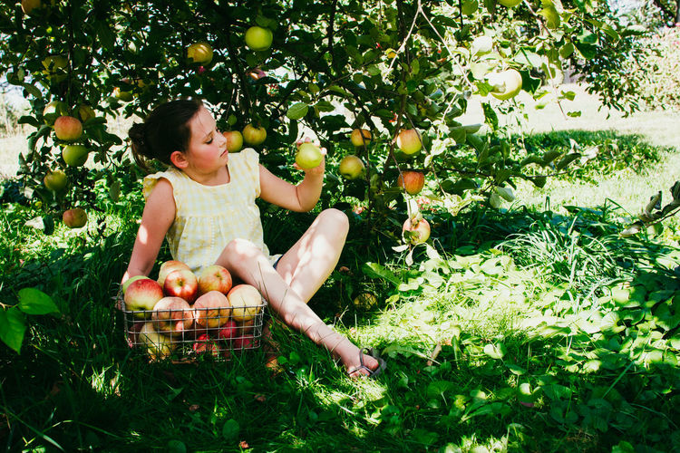 Apple - Fruit Casual Clothing Child Childhood Day Food Food And Drink Freshness Fruit Full Length Green Color Growth Healthy Eating Nature One Person Outdoors Plant Real People Sitting Wellbeing