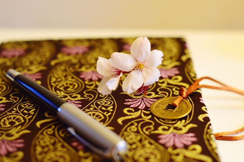 The Color Of School School Cherry Blossoms Sakura Sakurablossoms University Student