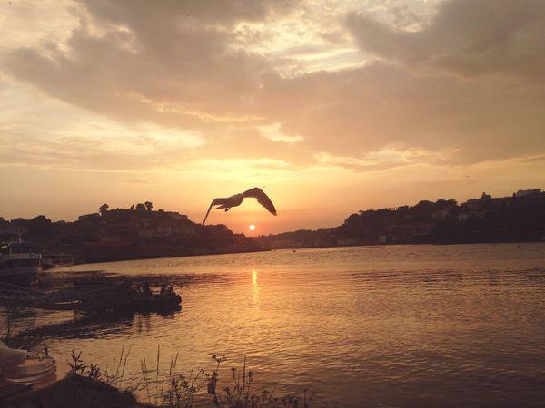 Un momento para el recuerdo Atardecer Junto Al Rio Oporto