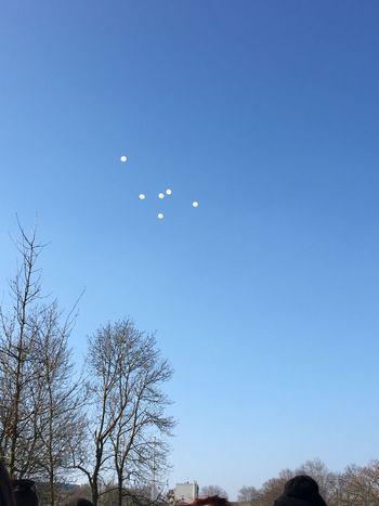 Lacherdeballons Memoire Victimes Accident Bus 11/02/2106 1an
