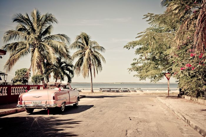 La dolce vita Palm Tree Tree Beach Sea Nature Mode Of Transport Water Beauty In Nature Outdoors No People Sand Sky Day Horizon Over Water Car Cabrio Pink Color Streetphotography EyeEmNewHere Carribean Cuba EyeEm Best Shots Sigma Sigma 18-35 F1.8 Nikon