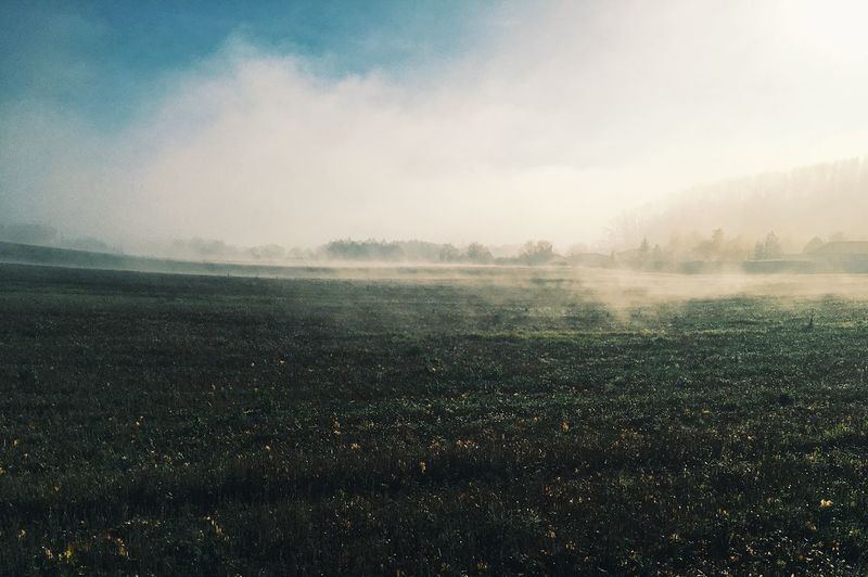 Landscape Nature Beauty In Nature Field Tranquility Fog Shades Of Winter
