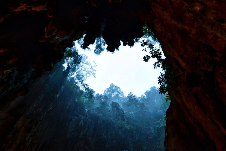 Batu Caves -Malaysia Beauty In Nature Cave Day Low Angle View Mountain Nature No People Outdoors Scenics Sky Tranquil Scene Tranquility Tree Tree Trunk