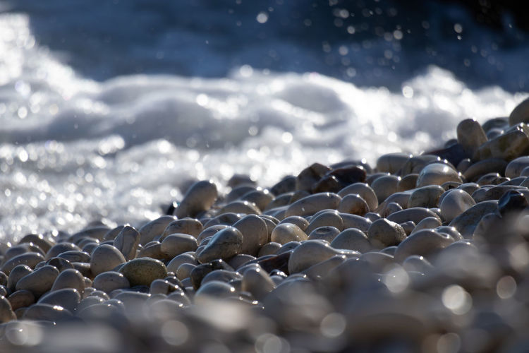 Water Beach Rock Sea Solid Selective Focus Nature Land Pebble Day Stone - Object No People Beauty In Nature Stone Sunlight Close-up Rock - Object Tranquility Outdoors Surface Level Pier Galets Galette Plage