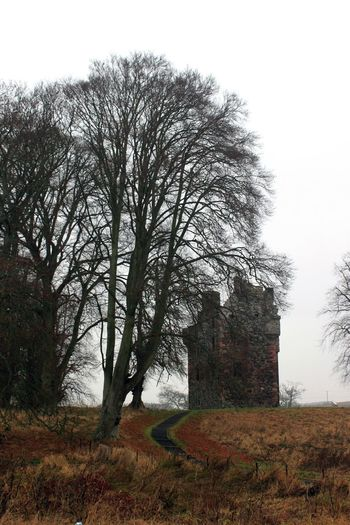 Last picture for a few days - off to have surgery on my hand. This beautiful tower is one of the views on my journey to and from hospital. Greenknowes Tower, Gordon, Scottish Borders. Tree Nature Built Structure Architecture No People Bare Tree Beauty In Nature Outdoors Grass Tranquility Day Sky Building Exterior Landscape