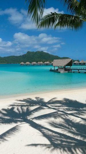 Light Blue Beautiful Nature Bora Bora  Blue Sea Sunny Day Beach