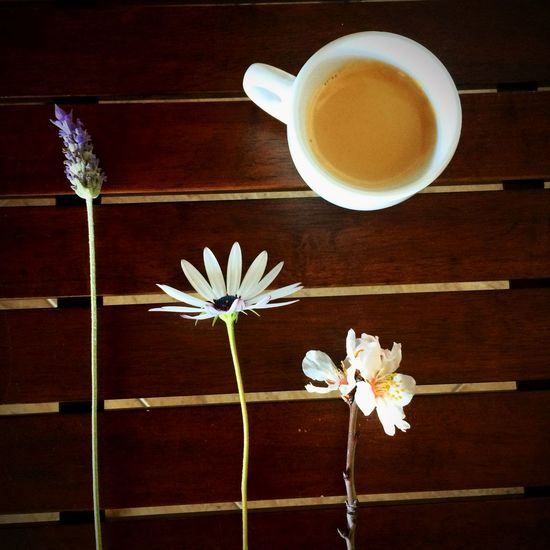 """""""La felicidad son pequeños detalles, un poco de cielo azul, un vientecillo suave y especialmente la paz de espíritu.. Sweet Coffe❤️ Breakfast ♥ Coffee ☕ Coffemy My Breakfast Coffeetime Coffeecollection The EyeEm Breakfast Club"""