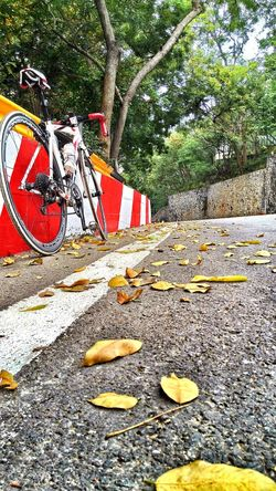 The Color Of Sport @Khao Sam Muk, Roadrace Bicycle Hill Outdoors
