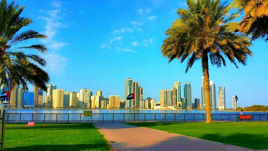 Sand Built Structure Architecture City City Life Building Exterior Sea Water Beach Shore Coastline Tower Vacations Sky Sharjah Dubai Sharjah Uae