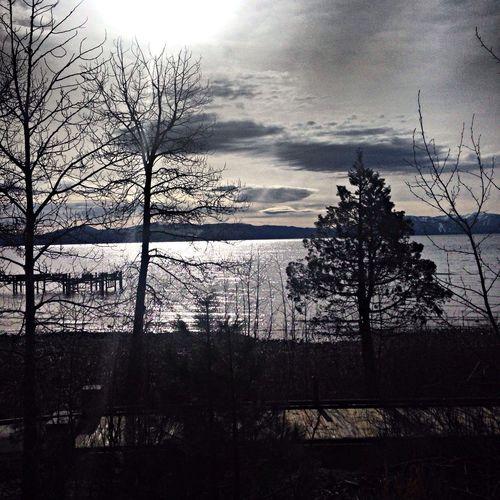 Sweet morning in Tahoe city ?