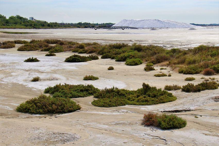 Provence France Camargue Salt Mountain Salt Sea Sand Sky Landscape