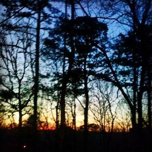 Well spring break is over. Back to reality. Goodbye Springbreak2014 Iwillmissyou Iaccomplishednothing nolife ugh gorgeous sky Alabama