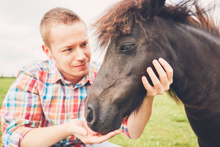Young farmer caress mare of the miniature horses on the pasture. Caress Farm Farm Life Farmer Headshot Livestock Love Lovely Man Mare Mini Horse Miniature Horse Outdoors People Person Pony Portrait Ranch Ranch Life Stroking Touch Touching Trust