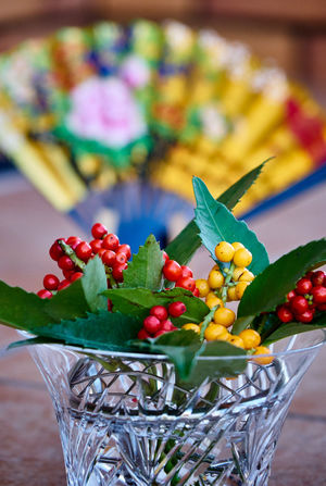 Bowl Close-up Colors Day Focus On Foreground Folding Fan Freshness Fruit Gold Colored Green Color Indoors  Japan Photography Japanese Culture Japanese Style Leaf Multi Colored New Year No People Red Tradition Traditional Culture Yellow Color