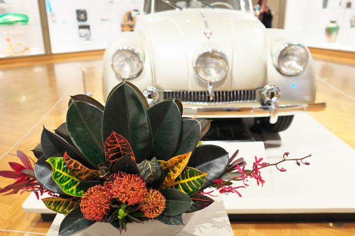 Display Flowers Like Objects Together Minneapolis Institute Of Art Minneapolis Minnesota Museum Similar Objects Two Of A Kind Volkswagen Volkswagen Beetle FUJIFILM X-T1 Fujifilm