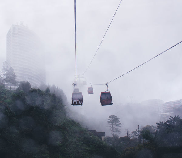 Sometimes i feel lost Lost In The Landscape The Week On EyeEm Cable Fog Hanging Nature No People Outdoors Overhead Cable Car Transportation Tree