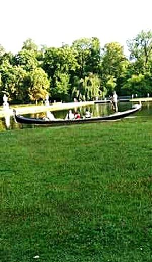 Park Tree Leisure Activity One Man Only Outdoors Adults Only Nautical Vessel One Person EyeEm Popular Photo The Week Of Eyeem Excellent Shot Exceptional Photographs EyeEm Nature Lover Tropical Climate EyeEm The Best Shots Looking At Camera Taking Photos Nature Vacations Travel Destinations Sea Adults Only Piękno Jest Wszędzie Green Color Orginal Experiences