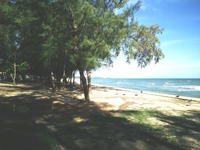 Quietness Sea View
