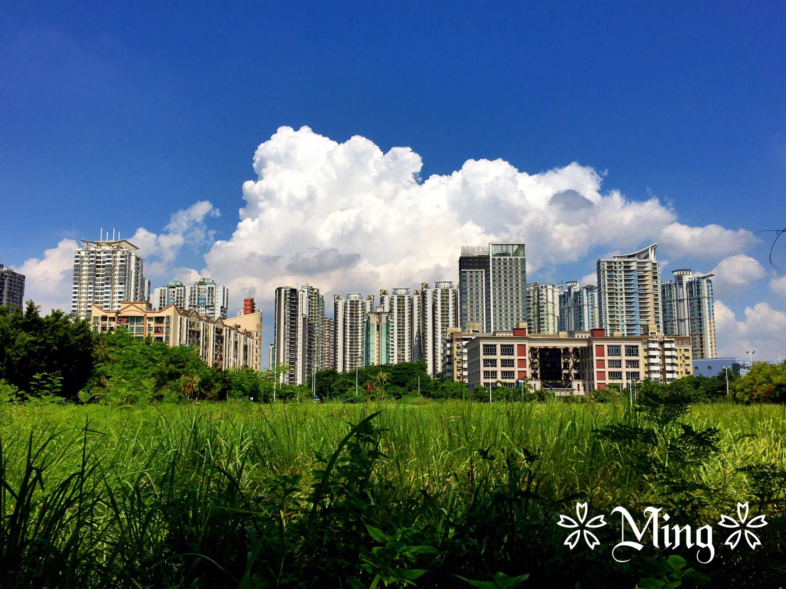 building exterior, architecture, built structure, city, sky, skyscraper, grass, tower, modern, tall - high, tree, urban skyline, office building, blue, cloud - sky, cityscape, cloud, green color, building, growth