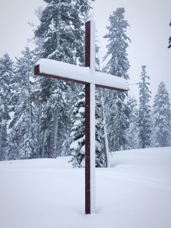 Cross Snow Christianity Mountain Top Northstar Truckee  Truckee, Ca Truckee Lake Tahoe California Lake Tahoe Ski Resort  IPhoneography Iphonephotography Snowy Day Snowy Trees Check This Out