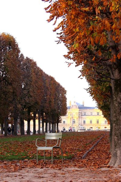 Tree Autumn Built Structure Building Exterior No People Architecture Outdoors Leaf Nature Day Paris Photography Paris Jardinduluxembourg Jardin Du Luxembourg Château City Castle Architecture Travel Destinations Nature Jardins Lonely Chair Jardin Photooftheday POTD