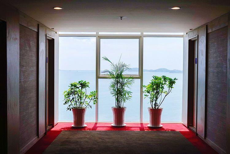 Nha Strang Vietnam Luxury Window Architecture