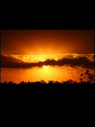 Sunset Orange Color Dramatic Sky Scenics Silhouette Tranquil Scene Nature Beauty In Nature Landscape Sky No People Outdoors Cloud - Sky Sunlight EyeEm Nature Lover Through The Clouds Just Beyond The Clouds