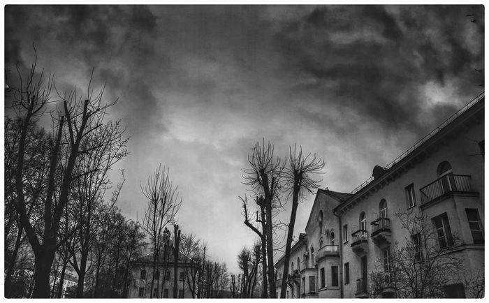 Streetphotography Sky Building Exterior Architecture Tree Dramatic Sky Blackandwhite Cloud - Sky Black & White Blackandwhite Photography Minskcity  Minsk,Belarus Minskgram