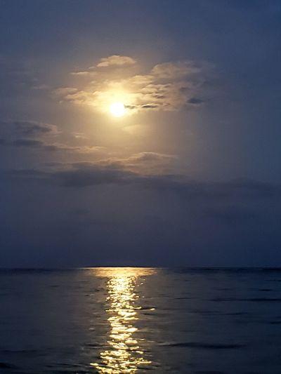 The Mobile Photographer - 2019 EyeEm Awards Water Sea Sunset Beach Beauty Sun Wave Reflection Sunlight Sky
