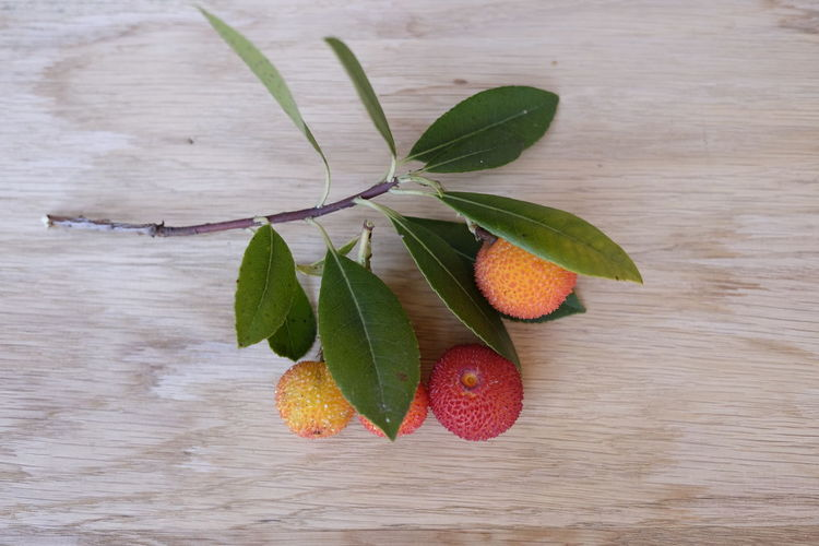 Arbutus Bayberry Close-up Delicious Food Food And Drink Freshness Fruit Sweet