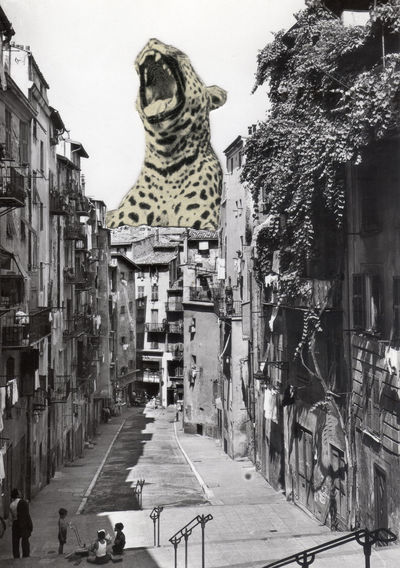 Collage 7 french antique vintage postcard,united kingdom,ephemera,calligraphy,manuscript,leopard Antique Art Collage Ephemera France French Leopard Manuscript Paris Postcard Retro Shabby Chic Vintage