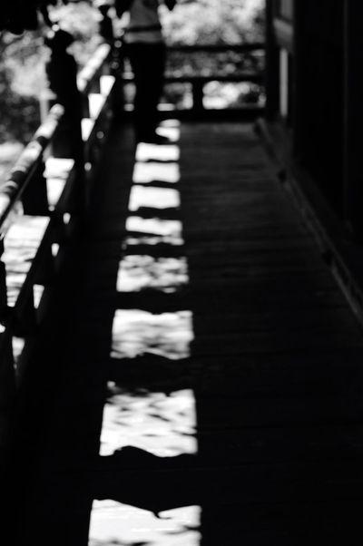 ひかりのみち Shadow Bw_collection Focus On Shadow Stairway Pentax Planar Carl Zeiss Monochrome EyeEm Gallery Black & White Bw_lovers Blackandwhite Pentaxk7 Planar50/1.4 Danzanjinjya