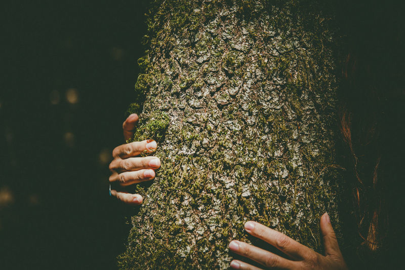 Close-up of woman embracing tree trunk