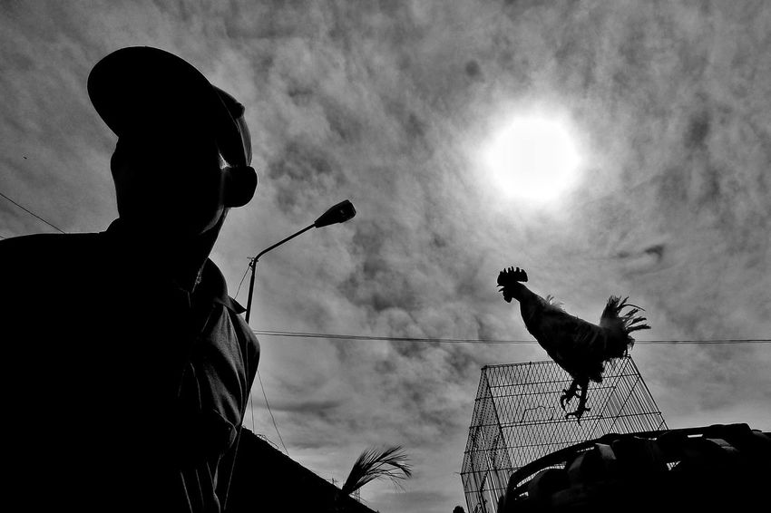 Easy morning EyeEm Streetphotography EyeEmNewHere Documentary Black And White Street Photography Shadow Silhouette Outdoors Documentary Photography Black & White Photography Blackandwhitephoto Monochrome Photography Low Angle View Weekly Welcome Cloud - Sky Light Up Your Life People Layering Layering Urban Lifestyle Silhouette Light Low Section