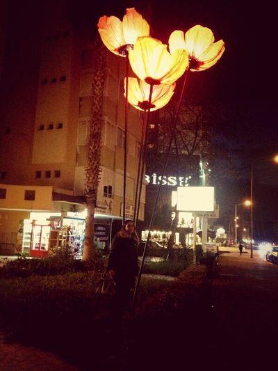gelincikler açtı mi:):) Flowers Flowers Lights