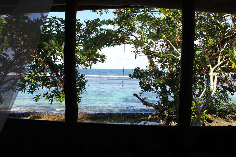 Beach Blue Sky Bungalow Check This Out Chilling Clear Water Island Islandlife Pacific Islands Pacific Ocean Palm Tree Paradise Pure Reef Relaxing Samoa  Savai'i Silhouette South Pacific Surfing Tranquility Tropical Paradise Turquoise Turquoise Water View